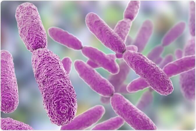 Treatment of Klebsiella bacteria and its symptoms